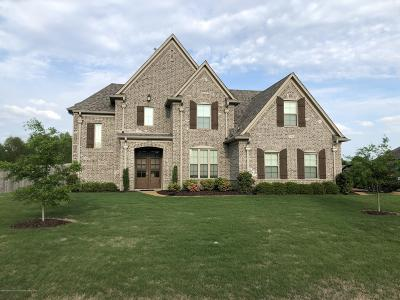 Olive Branch Single Family Home For Sale: 8146 Wisteria Dr