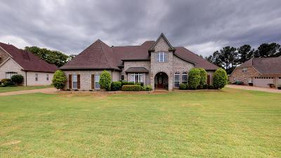 Desoto County Single Family Home For Sale: 3119 Bridgemoore Drive