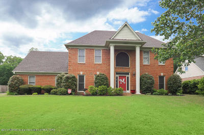 Olive Branch Single Family Home For Sale: 3705 College Bluff