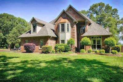Olive Branch Single Family Home For Sale: 6006 Morgan Drive