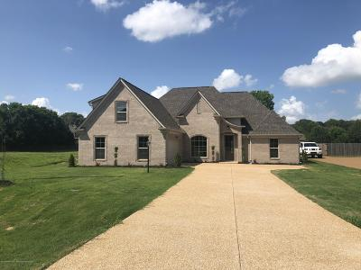 Olive Branch Single Family Home For Sale: 4782 Bowie Lane