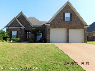 Southaven Single Family Home For Sale: 855 Magnolia Lane