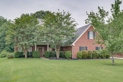 Olive Branch Single Family Home For Sale: 1687 Wood Lane Drive