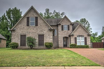 Olive Branch Single Family Home For Sale: 4917 W Trinity Park Drive