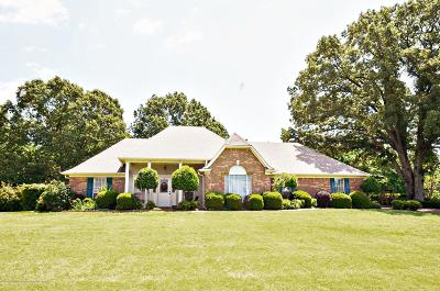 Desoto County Single Family Home Active/Contingent: 4746 Jessica Drive