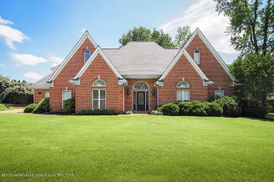 Olive Branch Single Family Home For Sale: 6555 Timber Oaks Drive