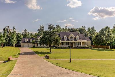 Byhalia Single Family Home For Sale: 205 Surrey Loop