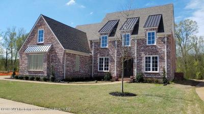 Olive Branch Single Family Home For Sale: 4193 Lundy Bend W