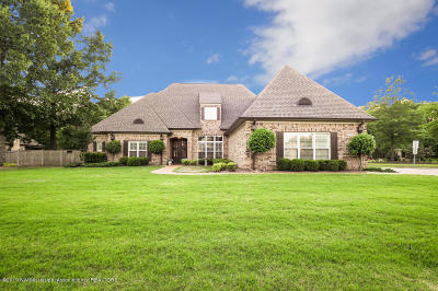 Southaven Single Family Home For Sale: 3803 Chancey Cove