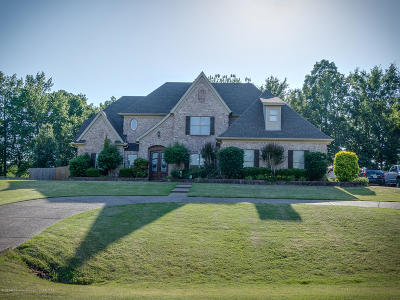 Southaven Single Family Home For Sale: 4249 Trumpington Cove