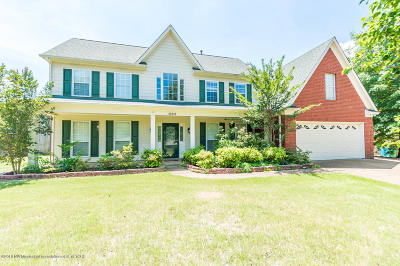 Olive Branch Single Family Home For Sale: 10311 Lazy Creek Drive