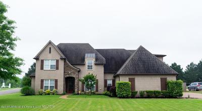 Olive Branch Single Family Home For Sale: 4039 Julia Lane