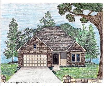 Lake Cormorant MS Single Family Home For Sale: $192,500