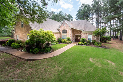 Southaven MS Single Family Home For Sale: $289,900