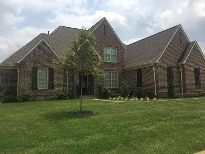 Desoto County Single Family Home For Sale: 4228 W Lundy Bend