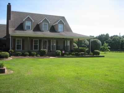 Byhalia Single Family Home For Sale: 11875 Ingram Mills Road