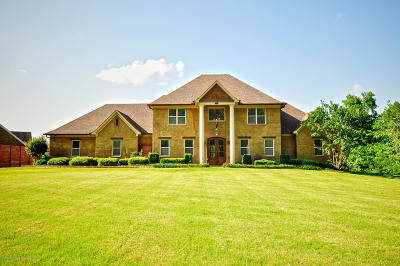 Desoto County Single Family Home For Sale: 5352 Nail Road