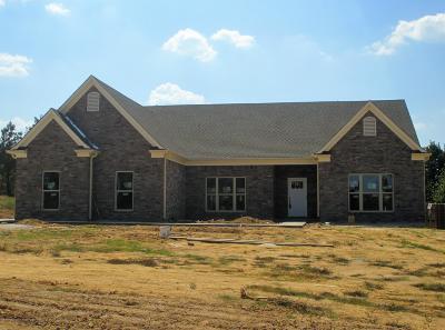 Byhalia Single Family Home For Sale: 580 Moore Loop