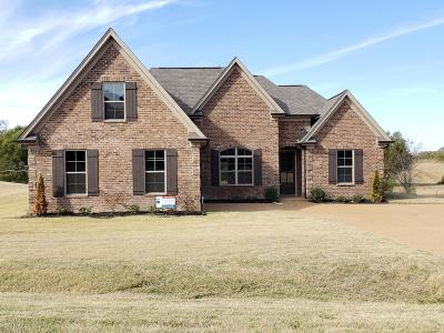 Tate County Single Family Home For Sale: 203 Eagle View Drive