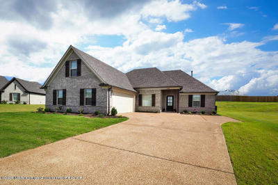 Desoto County Single Family Home For Sale: 3523 Marion Lane