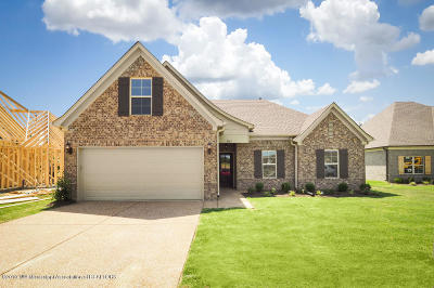 Desoto County Single Family Home For Sale: 3535 Marion Lane
