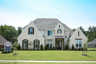 Desoto County Single Family Home For Sale: 14536 St Charles Drive
