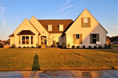 Desoto County Single Family Home For Sale: 7232 Jackson Landing Drive