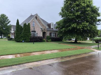 Desoto County Single Family Home For Sale: 7014 Apache Drive