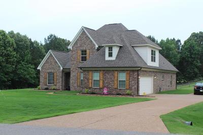 Desoto County Single Family Home Active/Contingent: 3125 Nikki Lake Drive