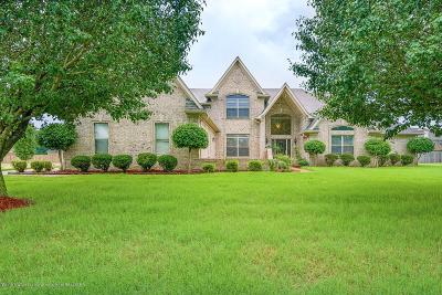 Desoto County Single Family Home For Sale: 4309 Abele Cove