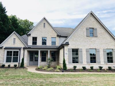 Desoto County Single Family Home For Sale: 6482 Sundance Drive