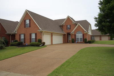 Southaven Single Family Home For Sale: 2950 Geoffrey Drive