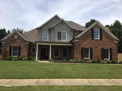 Southaven Single Family Home For Sale: 3457 Chateau Pointe Boulevard