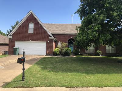 Southaven Single Family Home For Sale: 2823 Pinnacle Drive