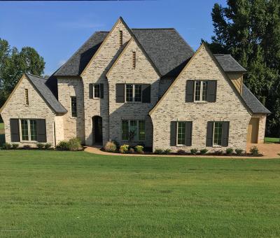 Desoto County Single Family Home For Sale: 836 Vinson Road