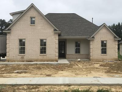 Desoto County Single Family Home For Sale: 3426 W Clair Circle