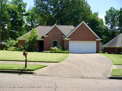 Desoto County Single Family Home For Sale: 5822 Michaelson Drive