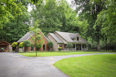 Southaven Single Family Home For Sale: 420 River Birch Trail Drive