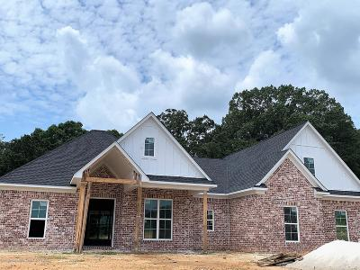 Desoto County Single Family Home For Sale: 3301 Fossil Hill Drive