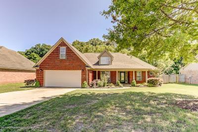 Desoto County Single Family Home For Sale: 1363 Pendulum Drive