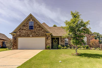 Southaven Single Family Home For Sale: 2643 Blue Ridge Drive
