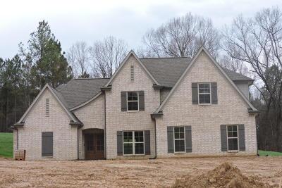 Desoto County Single Family Home For Sale: 1597 Johnston Road
