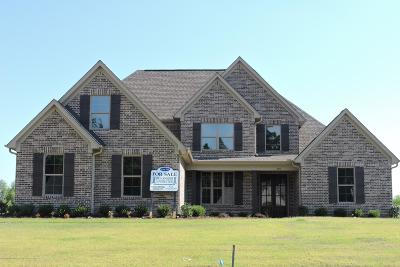 Desoto County Single Family Home For Sale: 4171 Bakersfield Drive