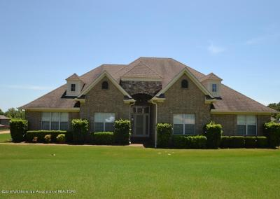Olive Branch MS Single Family Home For Sale: $299,000