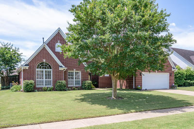 Southaven Single Family Home For Sale: 2725 Pyramid Drive