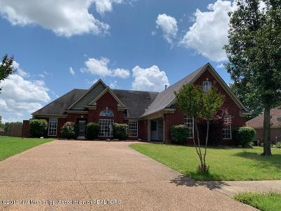 Southaven Single Family Home For Sale: 2417 Heather Ridge
