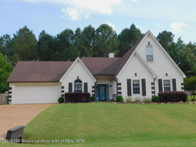 Olive Branch Single Family Home For Sale: 10423 Lazy Creek Drive