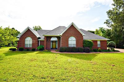 Desoto County Single Family Home For Sale: 3550 Bethel Road