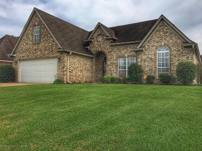 Desoto County Single Family Home For Sale: 4201 Carroll Drive