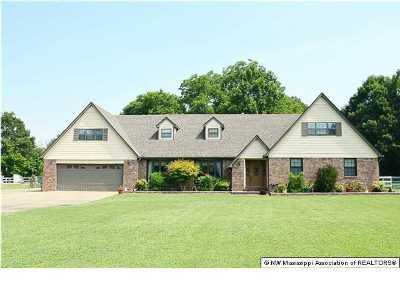 Desoto County Single Family Home For Sale: 4340 Faye Drive